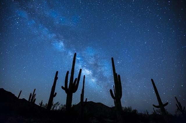 砂漠の星空